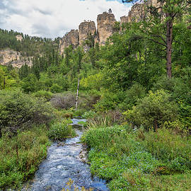 Little Spearfish Creek by Lorraine Baum