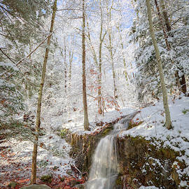 Little Waterfall of the Forest by Bill Wakeley