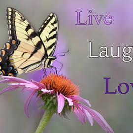 Live Laugh Love by Ann Bridges