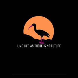 Live Life by Navin Sarawgi