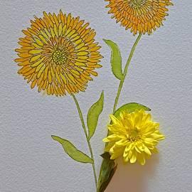 Lively Chrysanthemums by Sonali Gangane