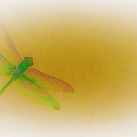 Living Freely - Pretty Dragonfly by Elizabeth Pennington