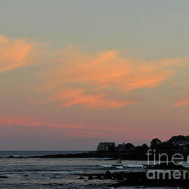 Lobster Cove Pink by Maurice Hebert