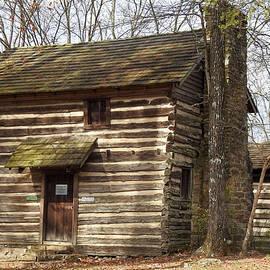 Log Home by Rick Davis