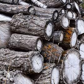 Log Pile by Dana Hardy