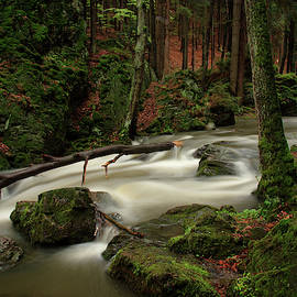 Long exposure photo from Doubrava river valley by Miklos Greczi