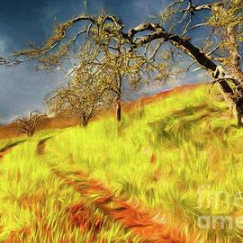 Long Grass in the Apple Orchard ap by Dan Carmichael