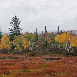 Long Pond, Maine by Bistra Hristova