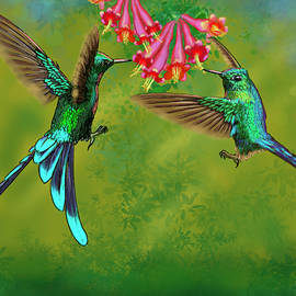 Long-tailed Sylph Hummingbirds Painting by Gary F Richards