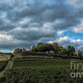 Looking Up at St. Emilion  by Luther Fine Art