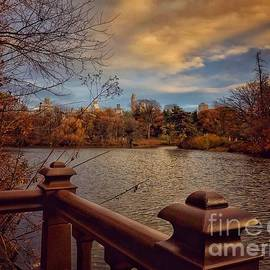 Lookout by the Lake - Central Park New York by Miriam Danar