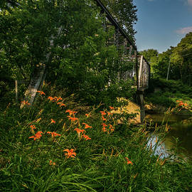 Lost Bridge Over The Eel River #1 by Danny Mongosa
