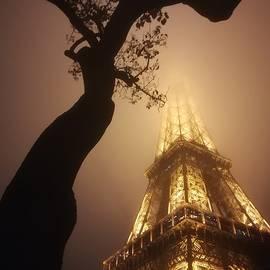 Lost in fog by Cosmin Stan