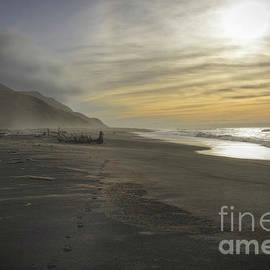 Lost On The Lost Coast by Mitch Shindelbower