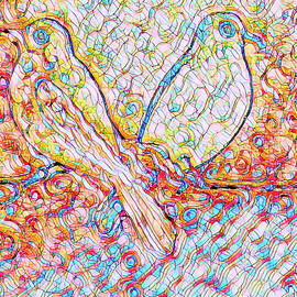 Love Birds Abstract by Robert Tubesing