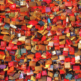 LOVE LOCKS - FINE ART PHOTOGRAPHY and A CHALLENGING 1,000 pc. JIGSAW PUZZLE KIT by Douglas Taylor