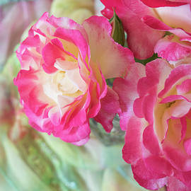 Lovely Roses by Nancy Jacobson