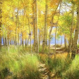 Lovin Autumn by Donna Kennedy