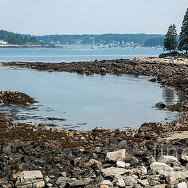 Low Tide at Port Clyde, Maine by Ruth H Curtis