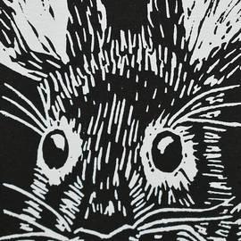 Lower Keys Marsh Rabbit by Beatriz Portela