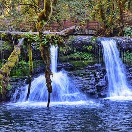 Lower McDowell Creek Falls by Dana Hardy