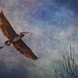 Luminous Flight  by Dale Kincaid