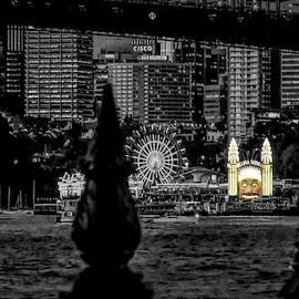 Luna Park Lights At Night by Joan Stratton