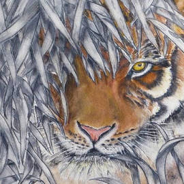 Lurking Tiger by Kelly Mills
