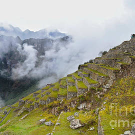 Machu Picchu Terraces by Catherine Sherman