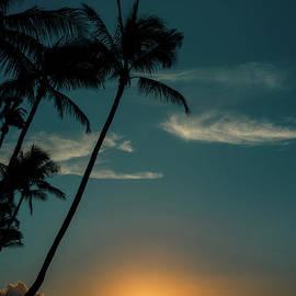 Magic Maui by Kelly Wade