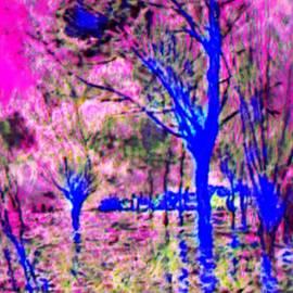Magic Tree #5 by Israel Lomovasky