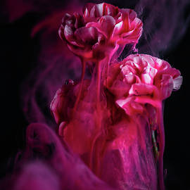 Magical Flowers by Steffen Gierok