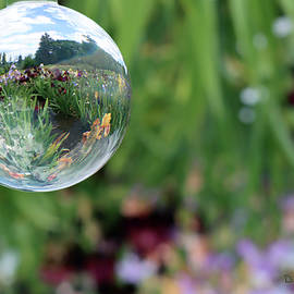 Magical sphere by Diane Stevens