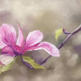 Magnolia by Lynne Adams