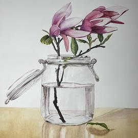 Magnolias. by Erkin Yilmaz