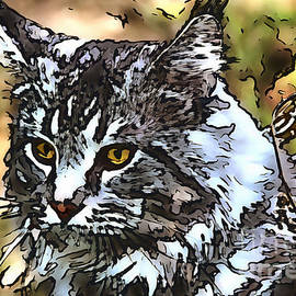 Maine Coon collection - 6 by Sergey Lukashin