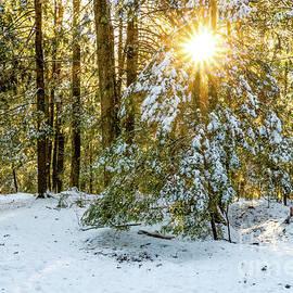 Maine Winter Wonderland by Elizabeth Dow