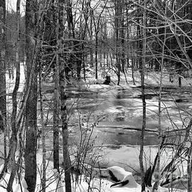 Maine's Winter Landscape by Sandra Huston