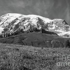 Majestic Mount Rainier BW by Marv Vandehey