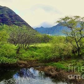 Makaha Hawaii by Craig Wood