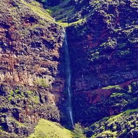 Makaha Waterfall by Craig Wood