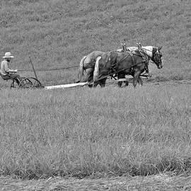 Making Hay by Kirk Riedel