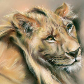 Male Lion at Rest by MM Anderson