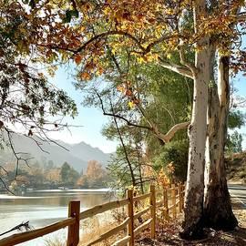 Malibou Lake Vista by Luisa Millicent