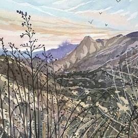 Malibu Creek Winter Dusk by Luisa Millicent