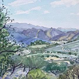 Malibu Creek from Las Virgenes Valley  by Luisa Millicent