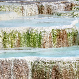 Mammoth hot springs closeup by Paul Freidlund