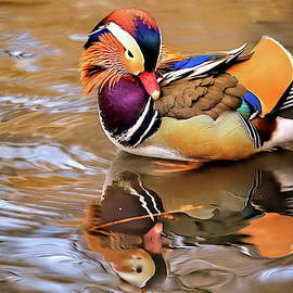 Mandarin duck of Central Park series II by Geraldine Scull