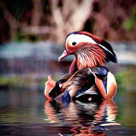Mandarin Rain by Susan Maxwell Schmidt