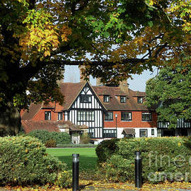 Manor House Through The Trees by Kathryn Jones
